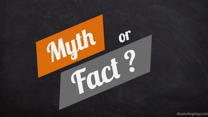 Motorcycles Myths and Facts every one should know
